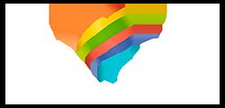 Bracap Logo